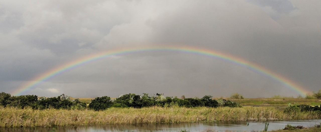 rainbow-narrow